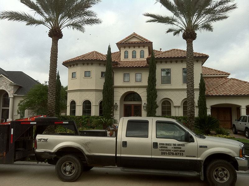 About Byron Bruess Tree Services
